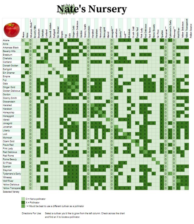 Apple Tree Cross Pollination Chart Nates Nursery