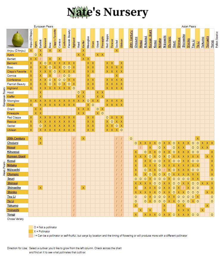 Pear Tree Cross Pollination Chart Nates Nursery