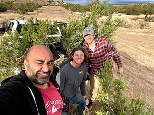 California juniper yamadori collecting trip