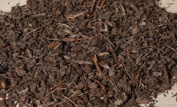 Pine Bark Fines Bonsai Soil